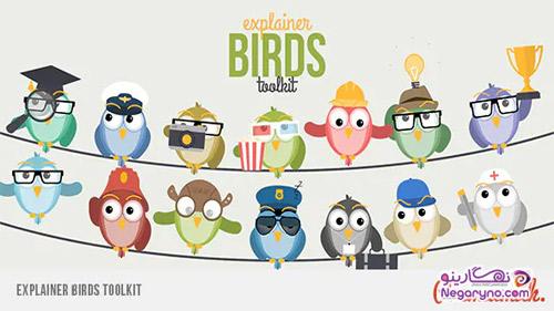 موشن گرافیک پرنده ها