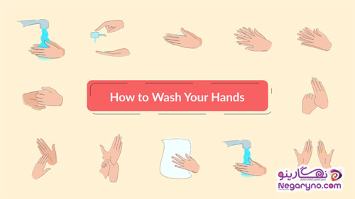 MotionArray Wash Hands