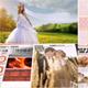 پروژه افتر افکت روزنامه عروسی