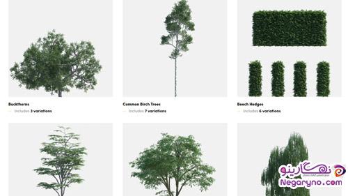 مدل سه بعدی باندل پک گیاهان و درختان