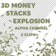 موشن ویدئو سه بعدی انفجار پول